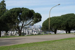 McLaren Park Is Owned By The San Francisco Recreation And Park Department.  More Information, Including Garden Plot Availability For The John King  Community ...