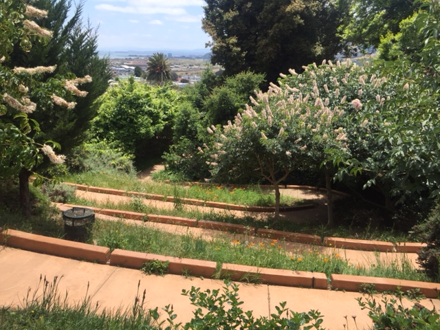 Visitacion Valley Greenway | San Francisco Parks Alliance